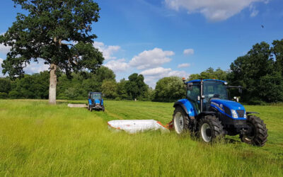 Farm Updates – How Have We Been Getting On?